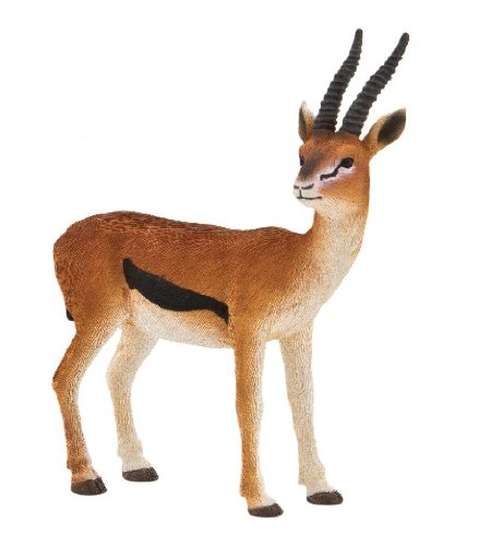 Mojo Fun 387122 Male Thomson Gazelle - Realistic International Wildlife Toy Replica