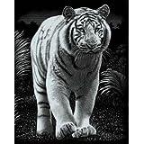 """Mammut 136040 - Kratzbild silber - Tiger, 20 x 25,5 cmvon """"Iden"""""""
