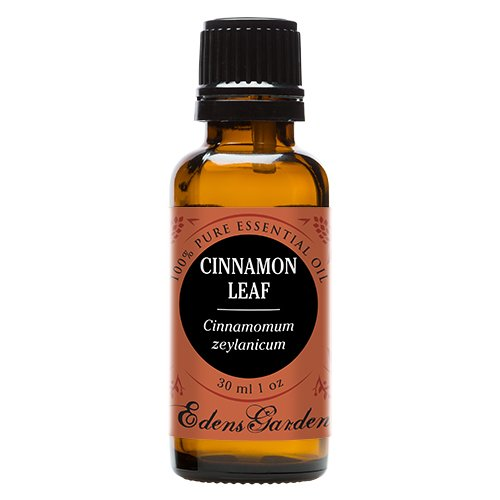 Cinnamon Leaf 100% Pure Therapeutic Grade Essential Oil by Edens Garden- 30 ml