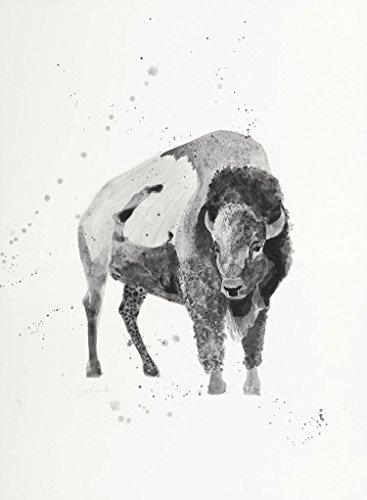 Watercolor Buffalo