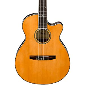 Amazon.com: Ibanez AEG10NII Nylon String Cutaway Acoustic ...
