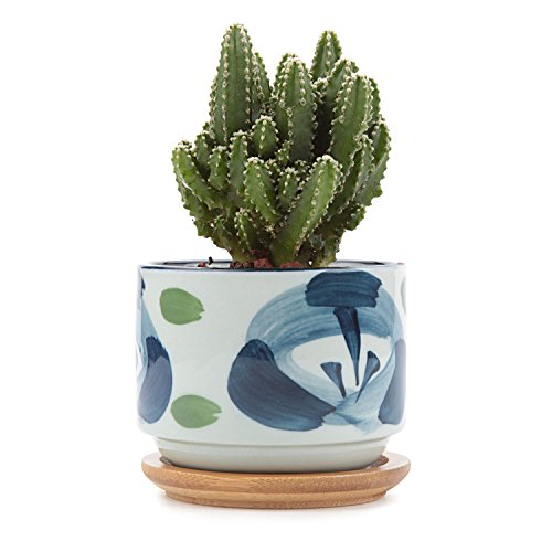 t4u-3-inch-ceramic-japanese-style-serial-no7-sucuulent-plant-pot-cactus-plant-pot-flower-pot-contain