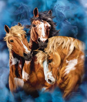 Nine Horses Blanket back-580992