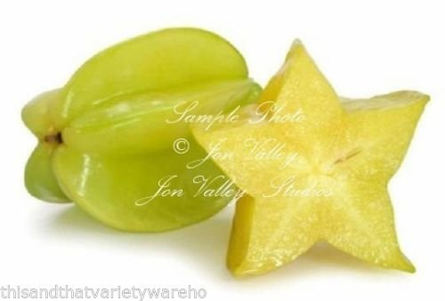 Averrhoa Carambola Star Fruit Tree Seeds Small Good in Container Purple Flower (Multi Fruit Tree compare prices)