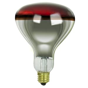 Sunlite 250R40/H/R Incandescent 250-Watt, Medium Based, R40 Heat Lamp Bulb, Red