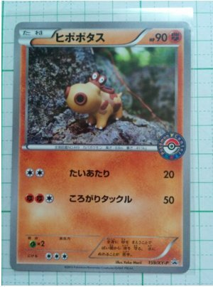 Pokemon Center limited Pokemon card promo Hipopotasu New From Japan F/S