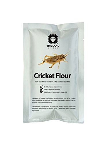 Cricket Flour made of 100% Cricket (.22 lb) (Water Chestnut Flour compare prices)