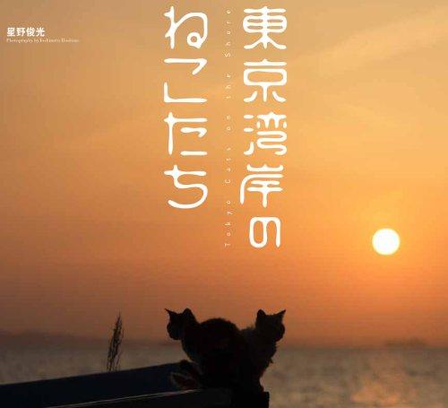 東京湾岸のねこたち