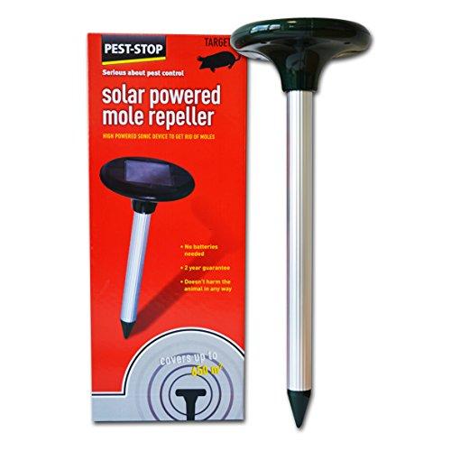 solaire-repulsif-taupe