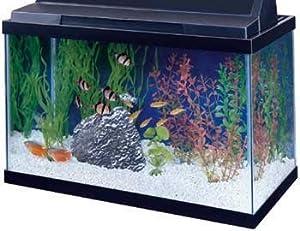 Amazon.com : All Glass Aquarium AAG10015 Tank Black, 15-Gallon : Fish ...