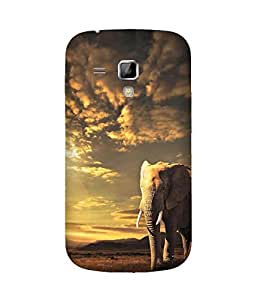 With An Elephant Samsung Galaxy S Duos S7562 Case