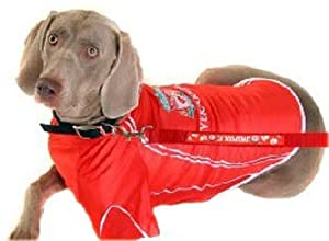 Official Dog Football Shirts Liverpool - Small from Taylors Footie Souvenirs (online orders)