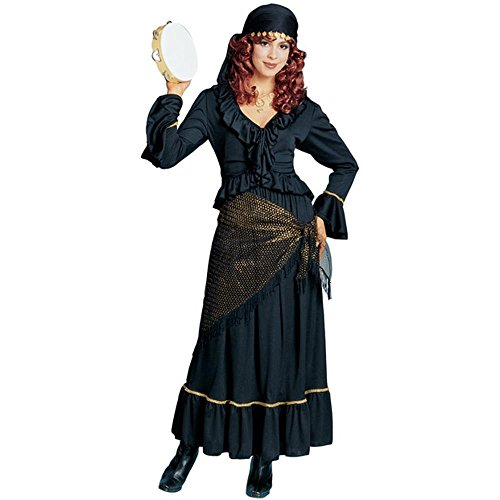Adult's Mystic Gypsy Halloween Costume (Size: Standard 8-12)