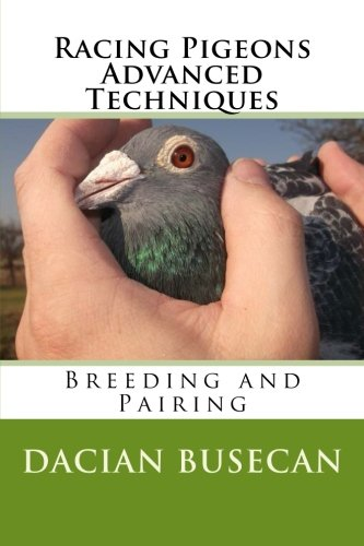 Racing Pigeons Advanced Techniques: Breeding and Pairing