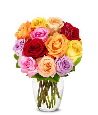 4th anniversary: One Dozen Rainbow Roses (FREE Vase Included)