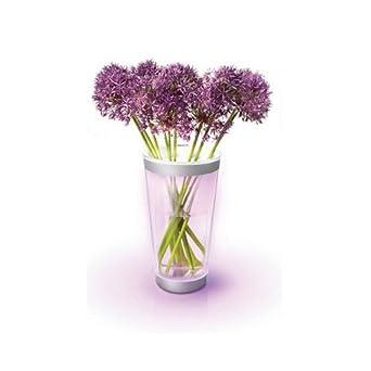 philips lumiware beleuchtete vase led wei und color 6915360ph db882. Black Bedroom Furniture Sets. Home Design Ideas