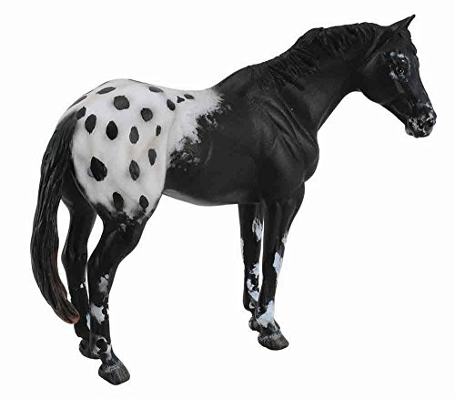CollectA Black Appaloosa Stallion