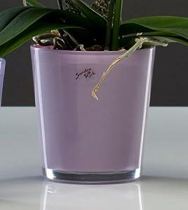 Moebel wohnaccessoires wohnaccessoires deko for Blumentopf glas