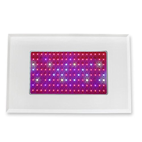 Green House- Led Grow Light For Flowering Plant And Hydroponics System 8Red:1Blue 220Volt 200Watt