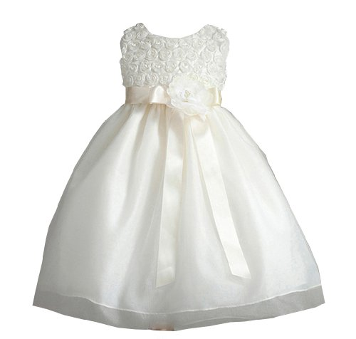 Audrey Rosette Embroidered Flower Girl Dress With Flower Sash For Infants Fancy Dress Color: Ivory Dress Size: 6M-9M (6-9 Months) front-914992