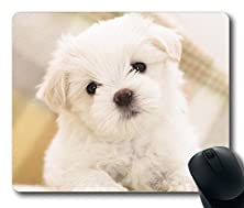 buy Exclusive Design From 8888 - Cute Dog With Headphone Listening Music Masterpiece Limited Design Oblong Mouse Pad By Cases & Mousepads - 8.5*7.1*0.2 Inches -