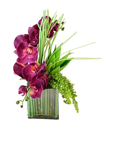 Creative Displays Orchid & Succulent in Stick-Filled Glass Container, Purple/Green