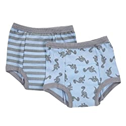 green sprouts by i play. Training Underwear, Grey Dino, 3T (Pack of 2)