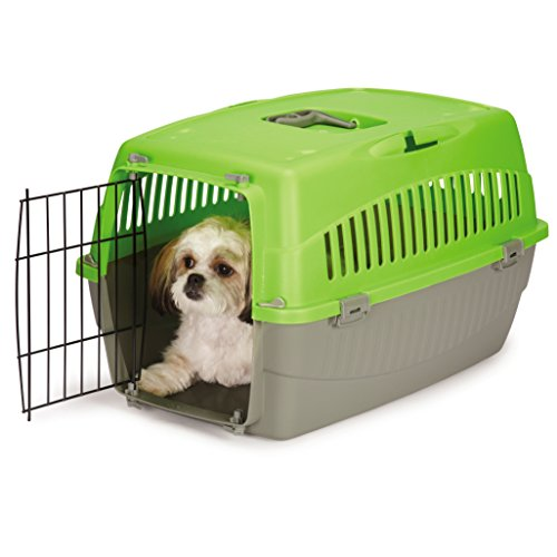 Cruising Companion Carry Me Pet Crate Medium Green