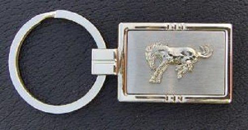 Ford Bronco Keychain Ford Bronco Keychain With Free