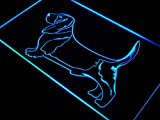 ADV PRO j489-b Basset Hound Dog Pet Shop Neon Light Sign
