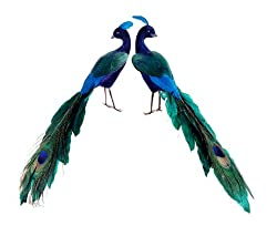 Pack of 2 Regal Peacock Colorful Closed-Tail Bird Figure Christmas Ornaments 11""