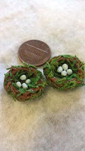 Amazon.com: Fairy Garden Accessories. Miniature Bird Nests