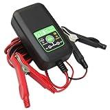 Cargador Battery Life BL750 para baterias de 6V y 12V, 750 mA, carga y mantiene las baterías.