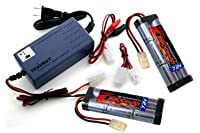 Two 7.2V 3800mAh High Power NiMH Batteries with A 7.2V-12V Smart Charger by Tenergy
