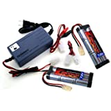 Combo: Universal Smart Charger: 7.2v - 12v (#01005) + 2 pcs Tenergy 7.2V NiMH 3800mAh Battery Packs