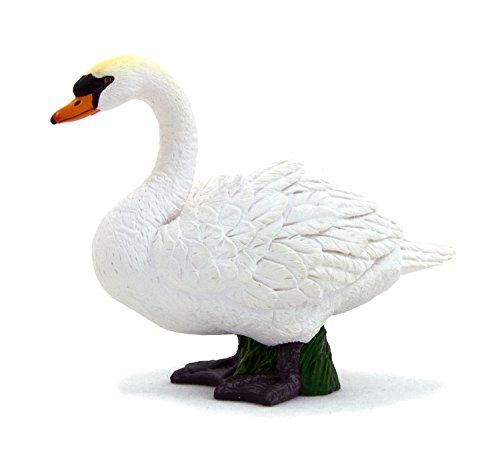 White Mute Swan by Mojo