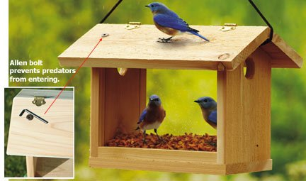 top filling bird feeder wood working plans