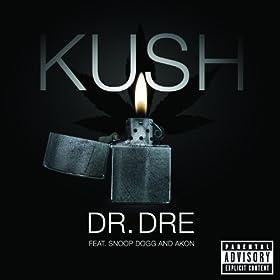 Kush (feat. Snoop Dogg & Akon) [Explicit]