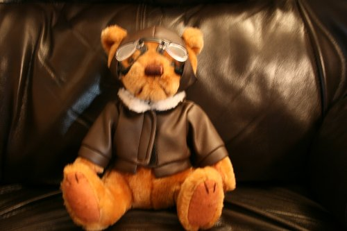 9-us-airways-pilot-bear