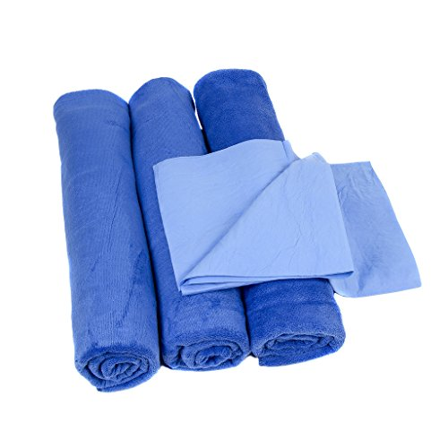 Neighbor's Envy XL Microfiber Towels - Extra Large 24 x 60 inch Auto Detailing Towels - Professional Quality - Pack of 3 Towels (Car Wax Maguiar compare prices)