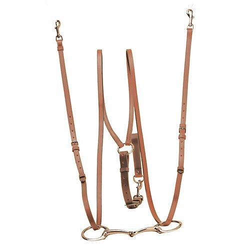 Tory Harness Leather Sliding Lunging Side Reins