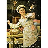 P1103 BIRDS CUSTARD POWDER NOSTALGIC OLD ADVERT FUN POSTER PRINT