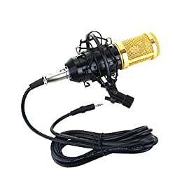 Imported Professional Condenser Microphone Mic Sound Studio Recording Dynamic