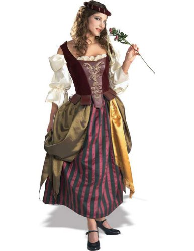 Adult-Costume Renaissance Maiden Halloween Costume - Most Adults