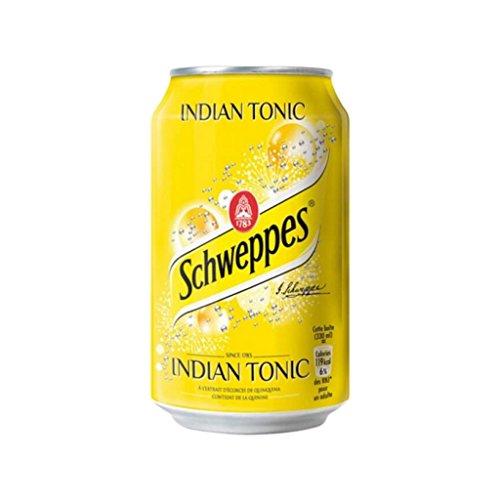 schweppes-indian-tonic-33cl-pack-de-24