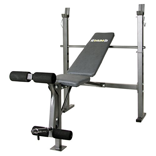 Body Champ Mid-Width Weight Bench with Leg Developer, Dark Gray/Black