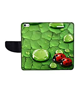 KolorEdge Printed Flip Cover For Apple IPhone 5 - Multicolor (43KeMLogo10771IPhone5)