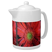 Red Gerber Daisy Flower Porcelain Teapot