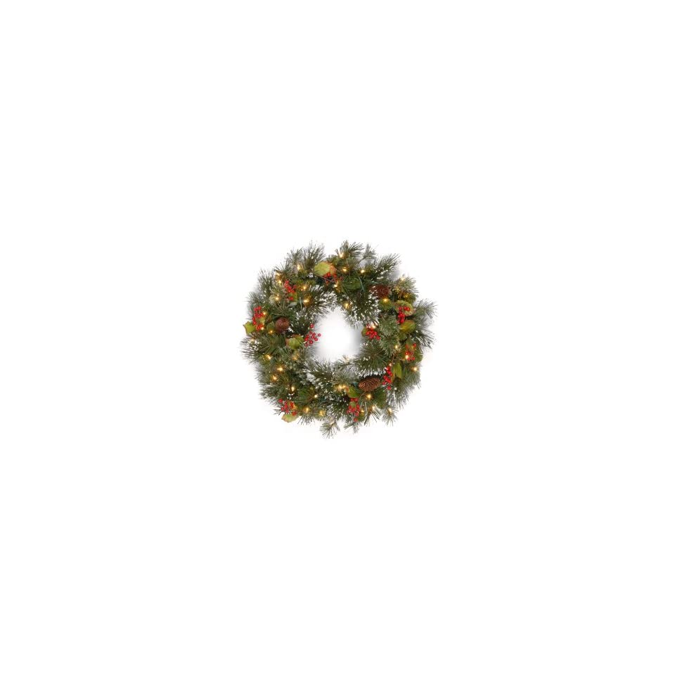 National Tree 24 Wintry Pine Wreath with Cones, Red Berries, Snowflakes and 50 Clear Lights (WP1 300 24W)
