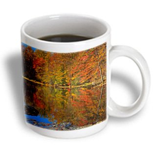 Danita Delimont - Charles Gurche - Ponds - Usa, New York, Adirondack Mountains, Autumn Pond, Putnam County - 11Oz Mug (Mug_189836_1)